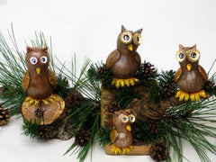 HOOT THE OWL ~ YOUTUBE Video