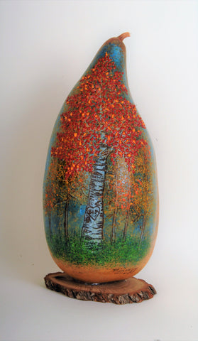 """RED ASPEN TREES IN AUTUMN"" DVD Gourd Class"