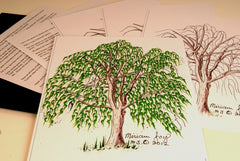 Willow Tree pattern
