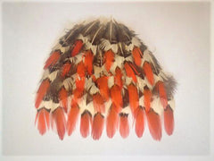 Tri-Orange Tipped Pheasant Feathers (12) pieces
