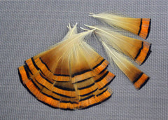Orange Sunset Fanned Feathers - New and Colorful - On SALE now!