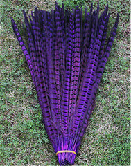 """Purple Haze"" - Pheasant Feathers - 10""-12""  long in Size!"