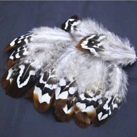 Brown Pheasant Feathers - Light and Colorful!