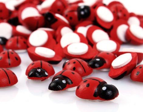 Wooden Lady bugs - Fun and Colorful