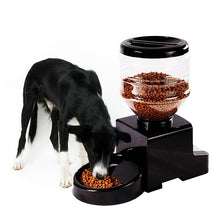 Load image into Gallery viewer, 5lb Auto Pet Feeder