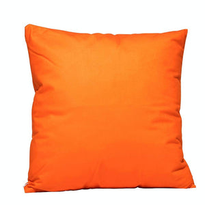 Eclante Orange Velvet Throw Pillow | Soft Decorative Pillow