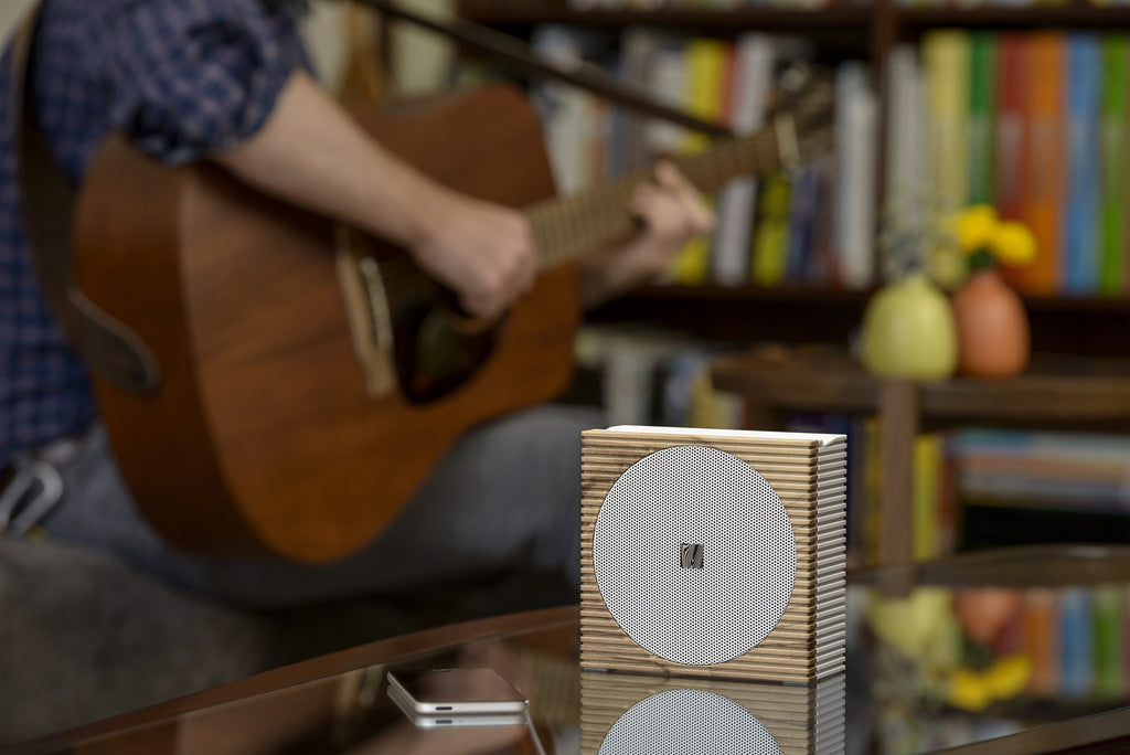 Naiise.com - Soundfreaq Sound Spot Portable Speaker | Wood