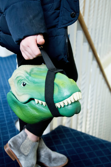 Dino Case - Lunch Box - Lunch Boxes - The Planet Collection - Naiise