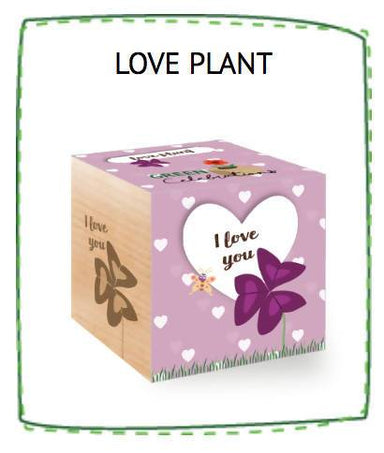 Feel Green Love Plant - I Love You - Plants - The Planet Collection - Naiise