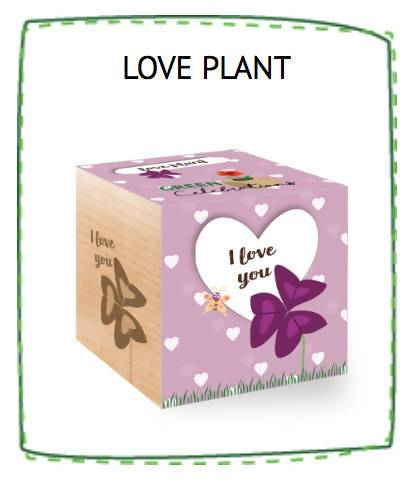 Love Plant - I Love You - Plants - The Planet Collection - Naiise