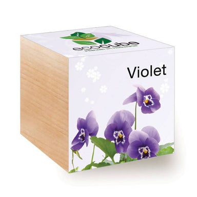Ecocubes Feel Green Flower - Violet Plants The Planet Collection