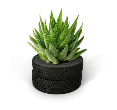 Fred Yard Goods - Tire Planter - Planters - The Planet Collection - Naiise