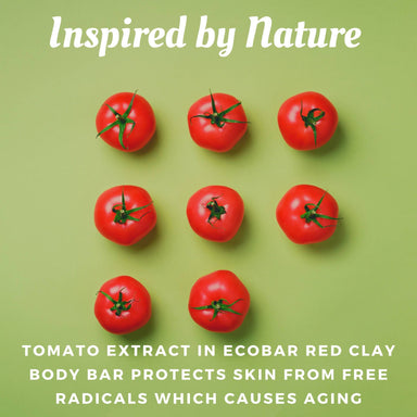 Ecobar Red Clay Bath Bar - Soaps - Ecobar SG - Naiise