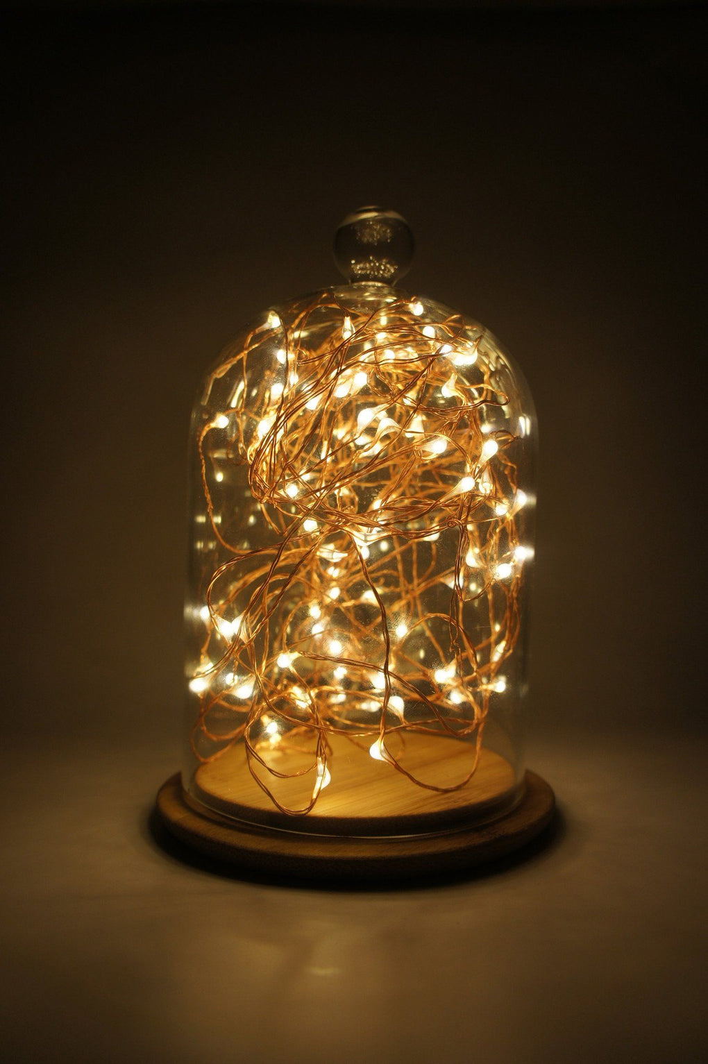 Bell Jar (No Fairy Lights Included) Home Decor Midnight Sparks