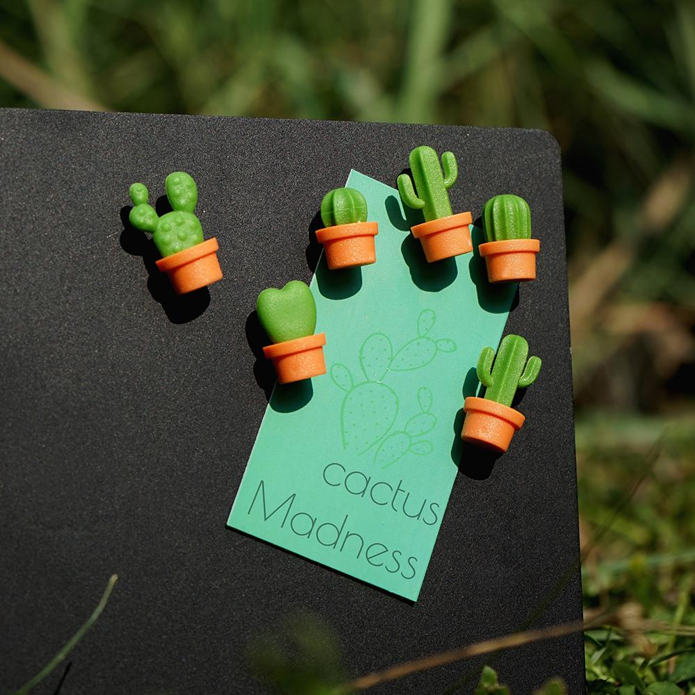 Cactus Magnet Set of 6 Home Decor Qualy