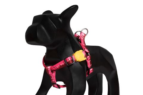 Cake Step-In Harness - Pet Harnesses - Zee.Dog - Naiise