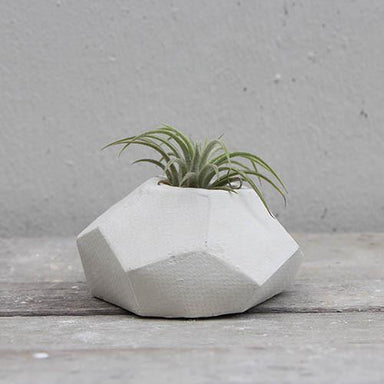 GALUR POT Concrete Planter - Big Planters Kuin Studio