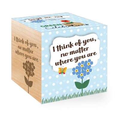 Green Celebration - Forget Me Not Gardening Kits Feel Green
