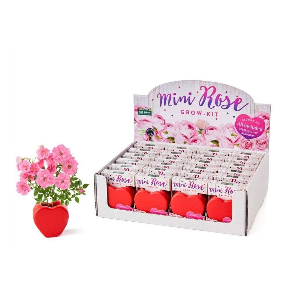 Grow Your Own Kits - Mini Rose Heart Gardening Kits Paris Garden