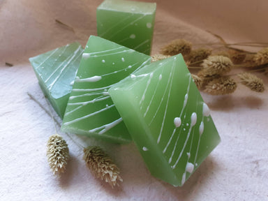 Hand Soap - Gogreen Teatree Lemongrass (set of 2 pcs) Soaps Alletsoap