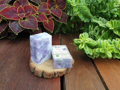 Hand Soap - Lilac Lavender (set of 2 pcs) Soaps Alletsoap