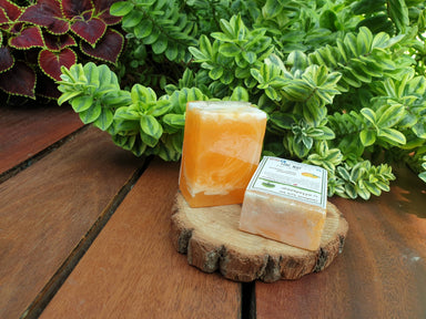 Hand Soap - Mandarin Sweet Orange (set of 2 pcs) Soaps Alletsoap