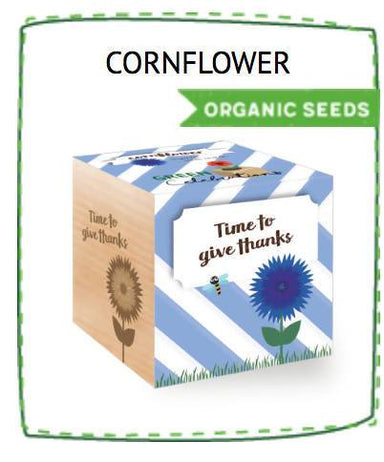Ecocubes - Corn Flower - Time To Give Thanks - Plants - The Planet Collection - Naiise