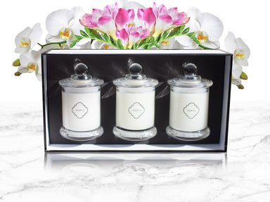 Miniature Candle Trio Gift Pack - Singapore Orchid Wild Freesia Lime Basil - Scented Candles - Temple Candles - Naiise