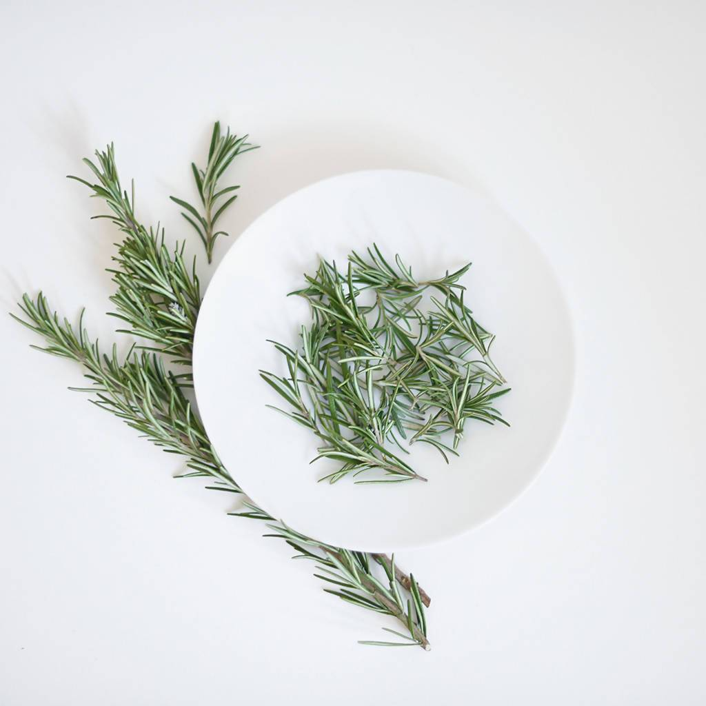 Organic Rosemary Essential Oil - Essential Oils - RE.VITYL - Naiise