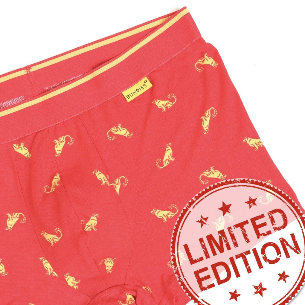 Pack of 2 Funky Trunks Underwear Bundies