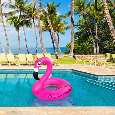 Pink Flamingo Float Floats BigMouth Inc