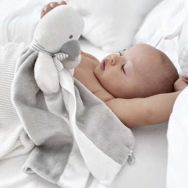 SootherBuddy™ Security Blanket - Baby Comforters - RAPH&REMY - Naiise
