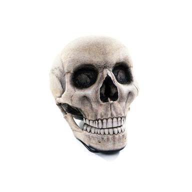 The Skull Chair (Pre-Order) - Naiise
