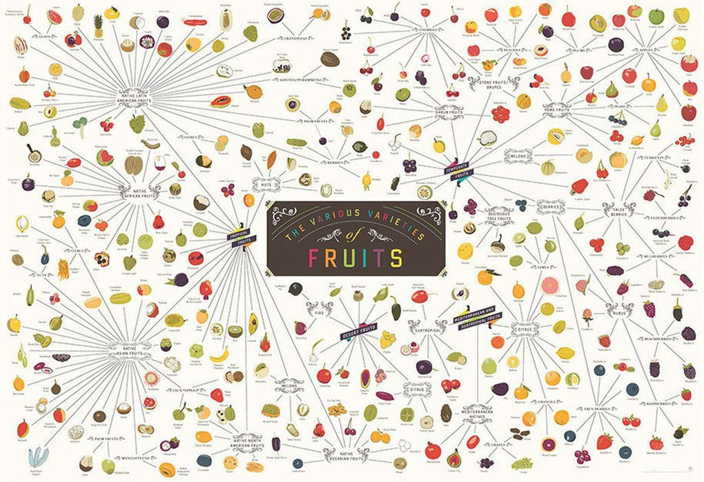 The Various Varieties of Fruits Posters Pop Chart Lab