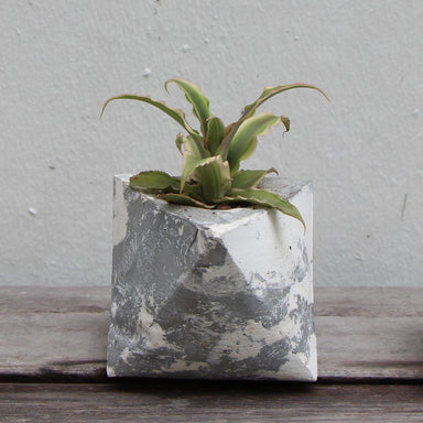 Triangle Concrete Planter Planters Kuin Studio