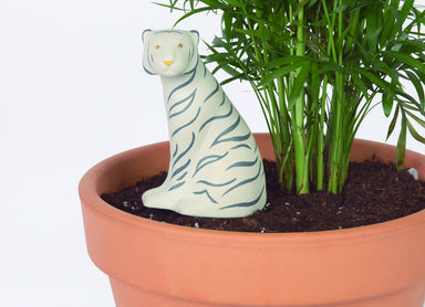 DOIY - Jangal Tiger Self-Watering System - Gardening Tools - The Planet Collection - Naiise