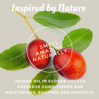 Ecobar Colour Preserve Conditioner Bar - Conditioner - Ecobar SG - Naiise