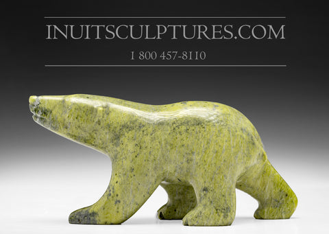 "6"" Lime Green Bear by Allan Sheutiapik"