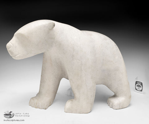 "16"" White Marble Bear by Ashevak Tunnillie"
