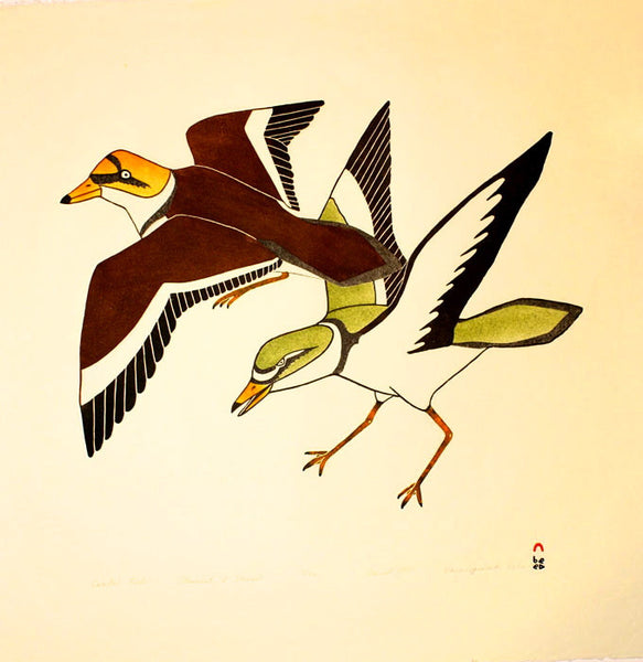 1997 COASTAL BIRDS by Kananginak Pootoogook