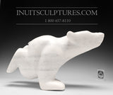 "14"" White Marble Diving Bear by Ottokie Samayualie"