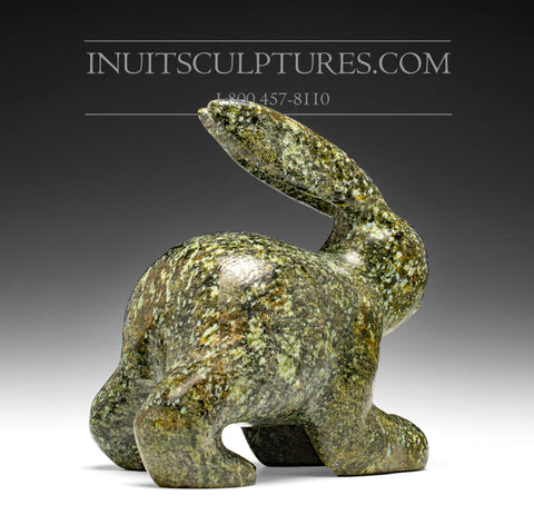 "RESERVED** 7"" Striking Arctic Hare by Kooyoo Simigak"