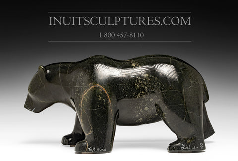 "18"" Powerful Black Walking Bear by Tuk Nuna"
