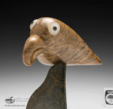 "8.5"" Bird Spirit by Famous Floyd Kuptana"