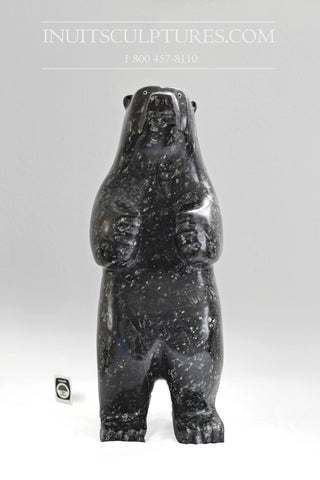 "22"" Large Standing bear by Louie Makittaq"