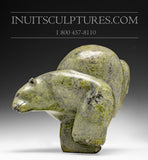 "10"" Two Way Chubby Diving & Dancing Bear by Isaaci Petaulassie"