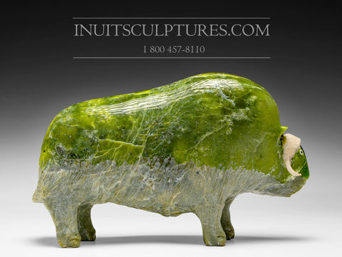 "11"" Apple Green Muskox by Joamie Aipeelee (1963-2020)"