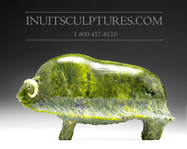 "9"" Apple Green Muskox by Joamie Aipeelee"