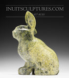 "10"" Lime Green Arctic Hare by Johnnee Lee Judea"