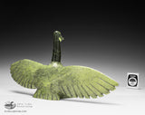 "15"" Proud Canada Goose by Johnysa Mathewsie"
